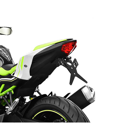 Kennzeichenhalter Kawasaki Z 125 ab BJ 2019- Protech
